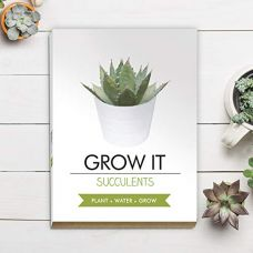 Grow it - sukulent